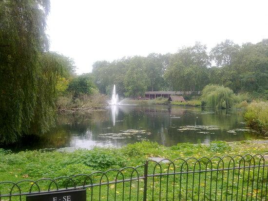 Parque de St. James: St. James Park - Laghetto