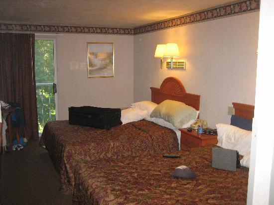 كيب بوينت هوتل: Standard Double Room