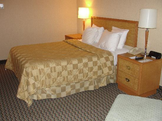 Comfort Inn: Great stay
