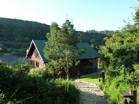 Thunzi Bush Lodge: View to Hornbill Chalet