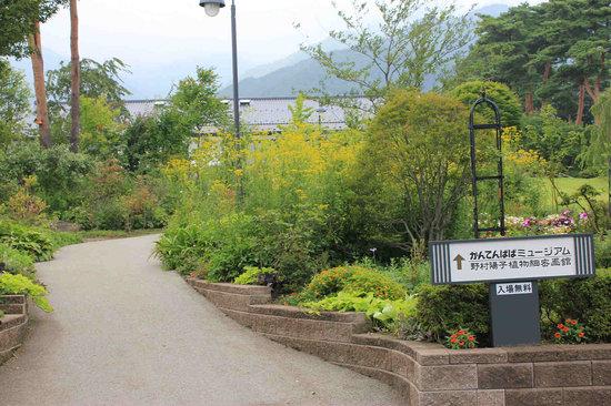 Ina, Ιαπωνία: 美術館入口の庭園