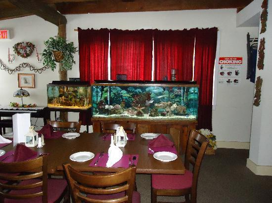 Riley's Bar and Restaurant: Enjoy our saltwater fish tanks