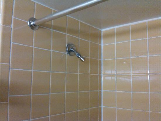 Rodeway Inn Meadowlands: Prehistoric shower head