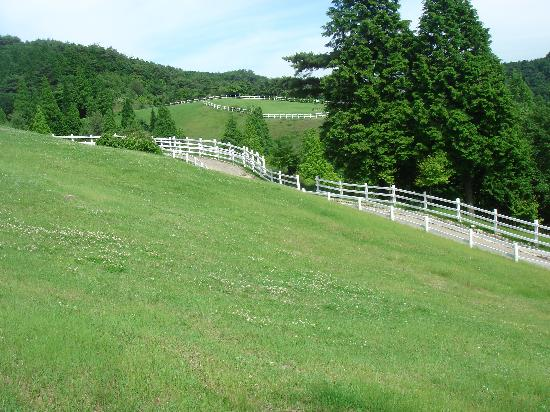 Rokkosan Farm: 六甲牧場の一部