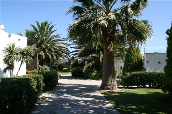 Yria Hotel Resort: The gardens