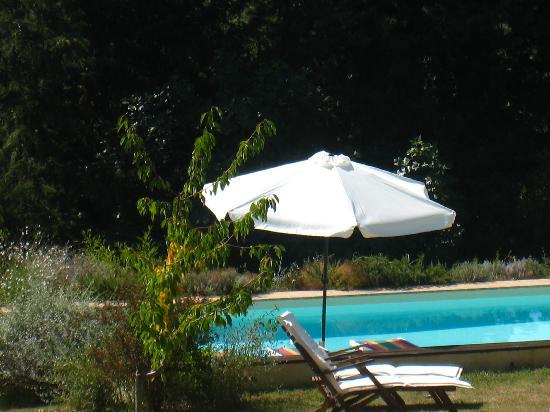 Agriturismo Floriani: piscina