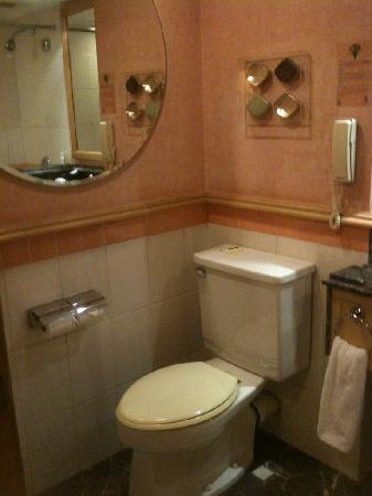 แกรนด์ พาร์ค อู๋ซี: トイレの写真です