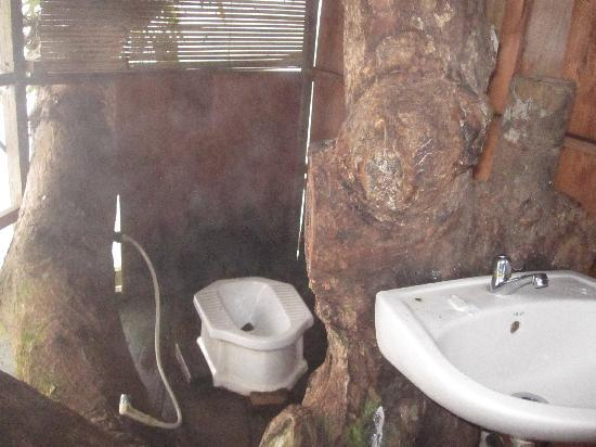 the gibbon experience tree house bathroom
