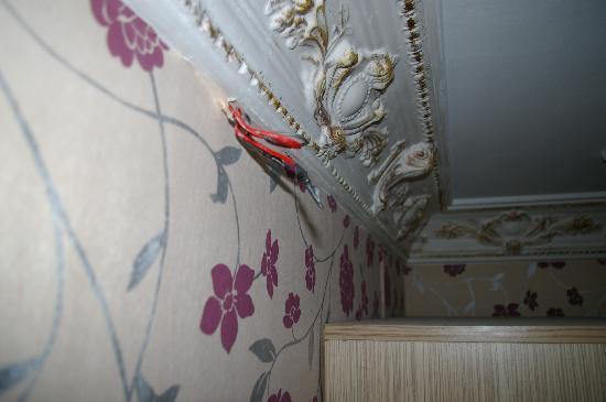 Daisy Hotel Istanbul: cavi elettrici pendenti