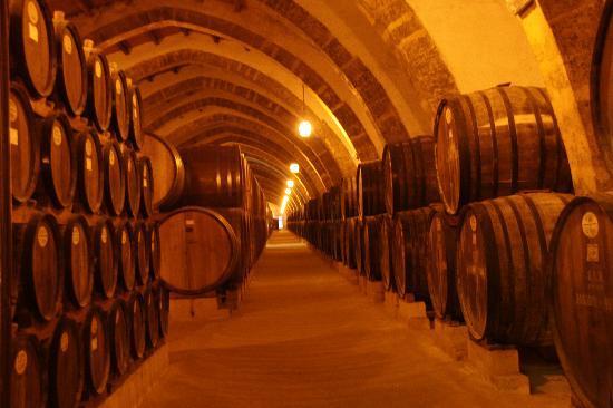 Marsala, Italia: Wine storage