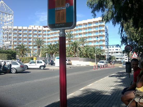 Port Denia : calle