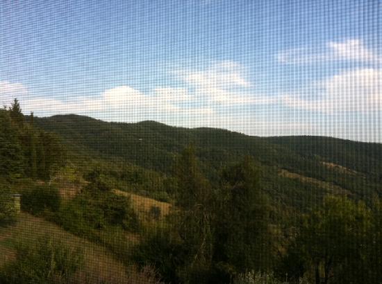 Villa Tatti: Dalla finestra della camera