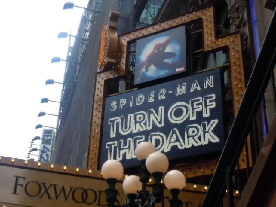 Spider-Man: Turn Off the Dark: スパイダーマン