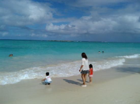 Kailua Beach Park: まさしく天国の海