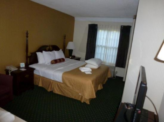 Black Bear Inn & Suites: Sleeping Area