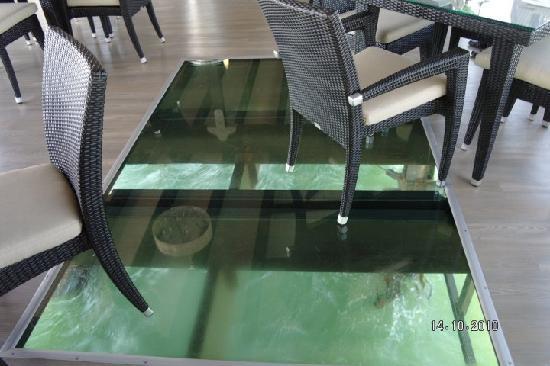 Jetty 1905 Glass Floor Panel