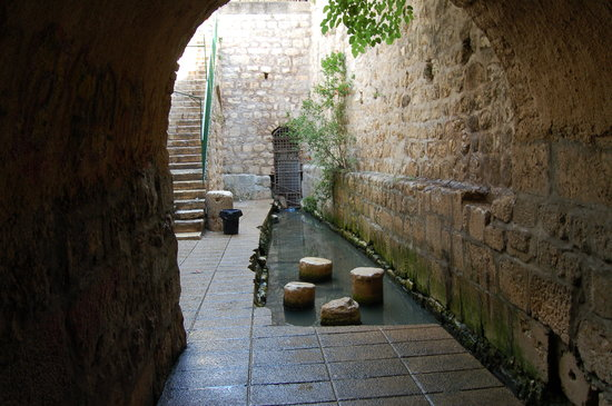 Hezekiah's Tunnels: Here's the pool at the (longer) tunnel exit