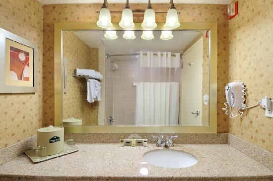 Wingate by Wyndham DFW / North Irving: Bathroom
