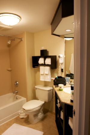 Hampton Inn Long Island/Commack: Massage Shower Head worked.