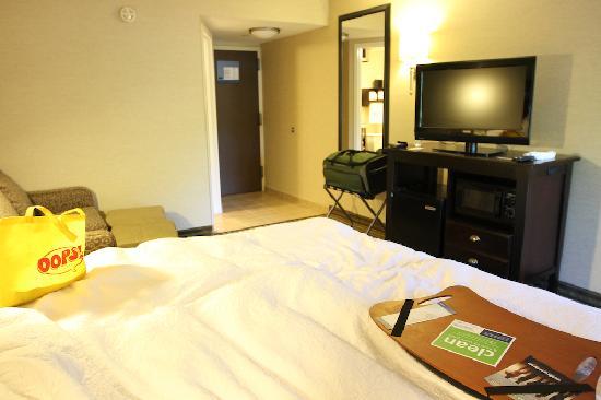 Hampton Inn Long Island/Commack: King Bed Suite