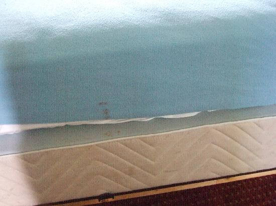 Knights Inn Barrie: Stained mattress and blanket (notice how the stains match up perfectly)