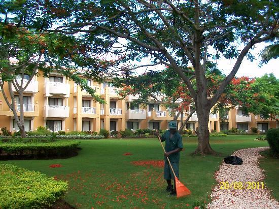 Viva Wyndham Dominicus Palace: Habitaciones, parque y limpieza!!!!