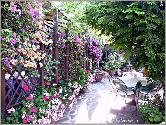 Hotel Danila : Particolare del patio esterno