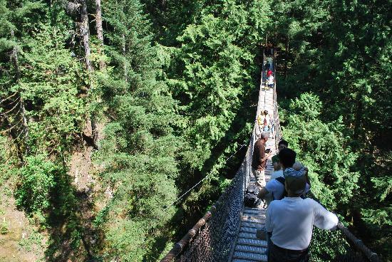 Lynn Canyon Suspension Bridge: Suspension bridge