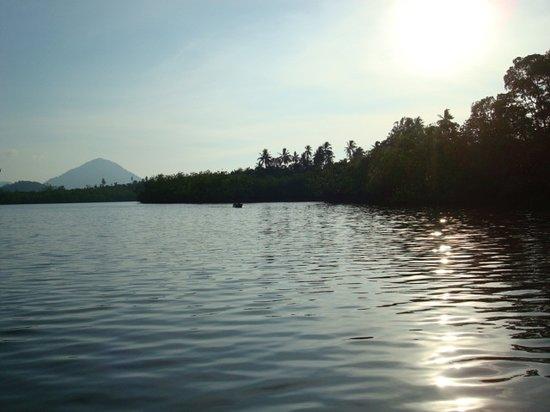 Semporna Proboscis River Cruise: River