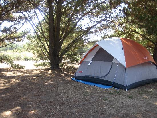 San Simeon State Park: Campsite
