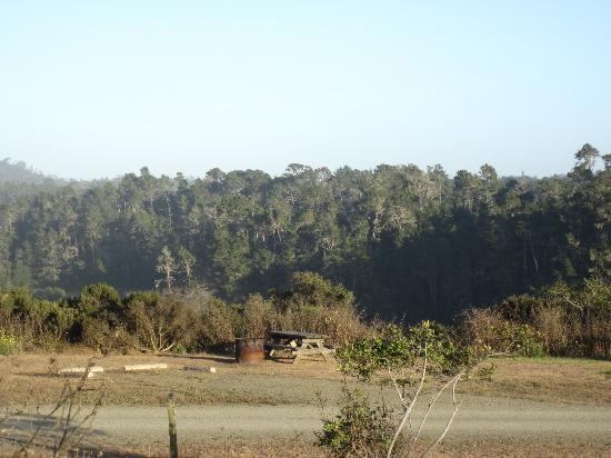 San Simeon State Park: Another site