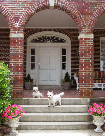 Chesapeake Bay View Bed & Breakfast: Mikey & Jamey are awaiting your arrival