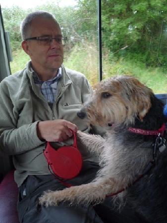 Bala Lake Railway: Millie and friend enjoy the train