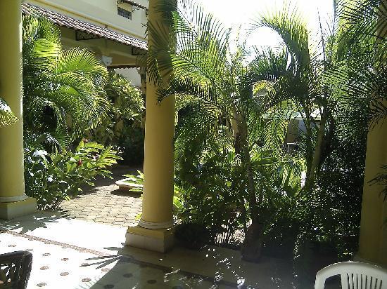 Casa Isabel: jardin