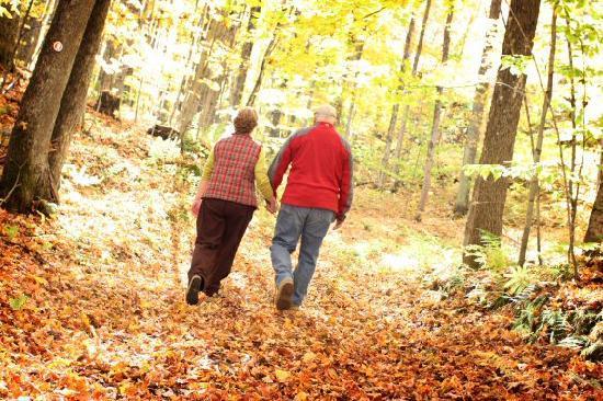 Trout Creek Condominiums - Vacation Rentals: Fall hiking, biking, golf
