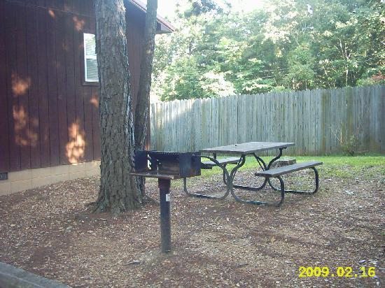 Cardinal Hill Cottages: picnic table and grill