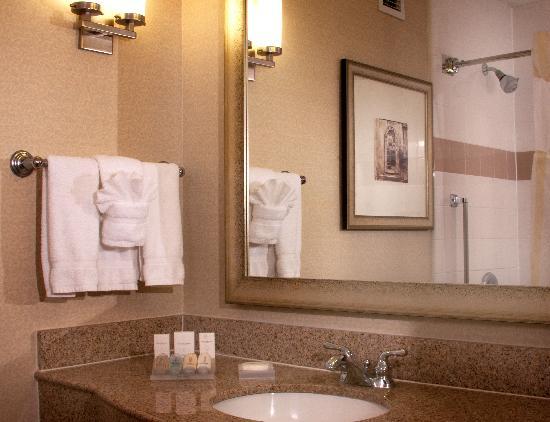 Hilton Garden Inn Jacksonville JTB / Deerwood Park: Bathroom