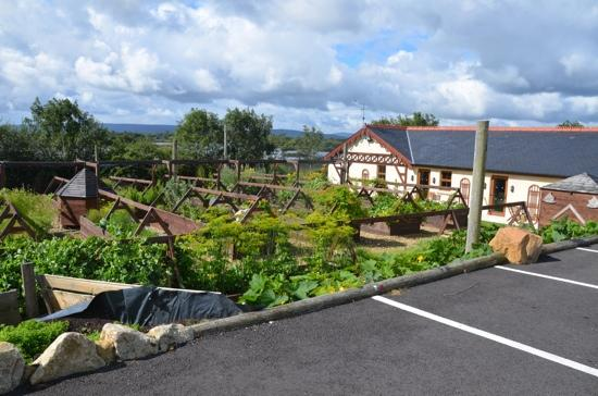 Watermill Lodge: own grown veg and herbs
