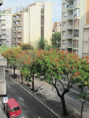 NH Belagua: view