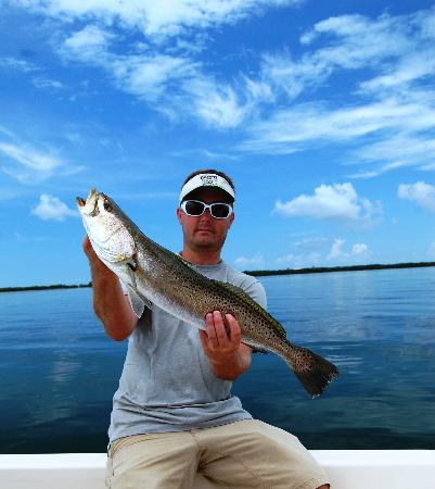 Tampa fl fishing charters updated 2018 top tips before for Tampa florida fishing charters