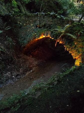 Shanklin, UK: magical bridge.......could there be a troll?