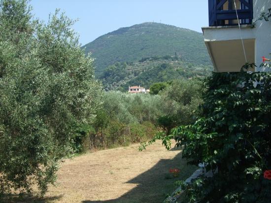 Alkistis Hotel: Balcony view