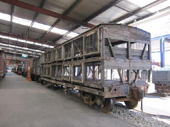 New South Wales Rail Transport Museum: 貨車