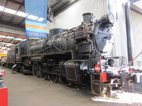 New South Wales Rail Transport Museum: 何故?和名?ミカド号