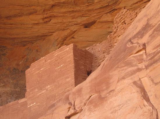 Monument Valley Safari: Anasazi ruins in Mystery Canyon