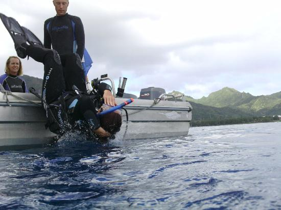 Adventure Cook Islands: Diver down