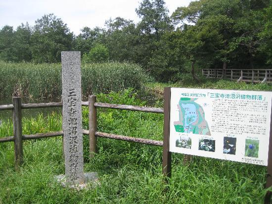 Shakujii Park: 三宝寺池は国の天然記念物に指定されている
