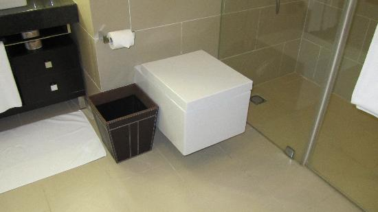 Crowne Plaza Bengaluru Electronics City: What's up with the square (and uncomfortable) toilet?