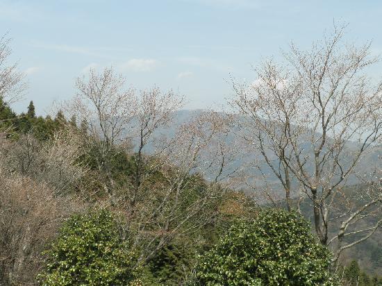 Mt. Myojingatake : 箱根大湧谷からの遠望