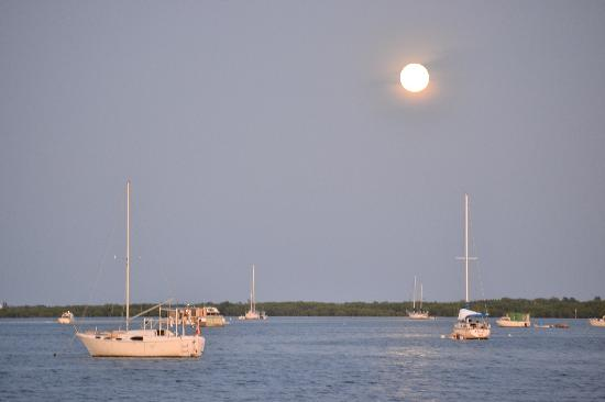 Boyd's Key West Campground: Moon rising view taken from our parking spot